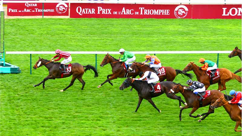 Qatar-Grand-Handicap-Des-Juments.jpg